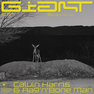 Calvin Harris & Rag'n'Bone Man - Giant - Artwork