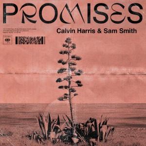 Calvin Harris & Sam Smith - Promises - Artwork