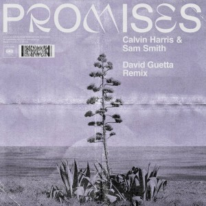 Calvin Harris & Sam Smith - Promises [David Guetta Remix] - Artwork