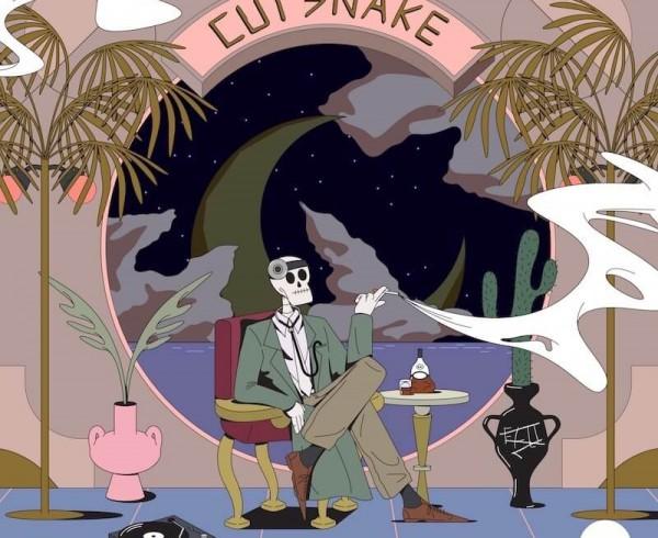 Cut Snake - Dr Um - Artwork