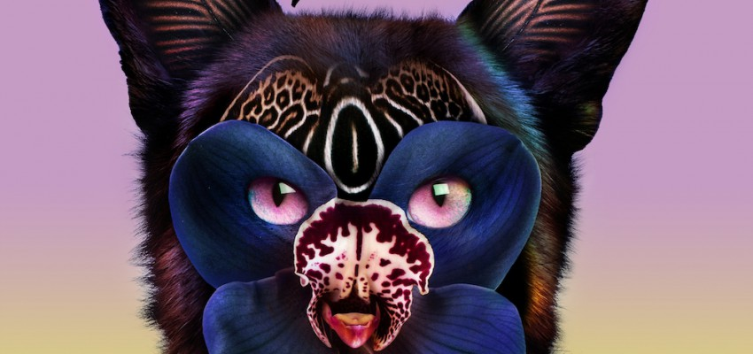 galantis-hook-n-sling-love-on-me-artwork-1