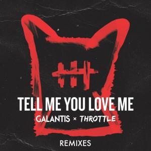 Galantis & Throttle - Tell Me You Love Me [Remixes] - Artwork-2