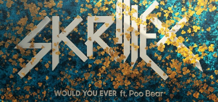 Skrillex ft. Poo Bear - Would You Ever - Artwork-2-2