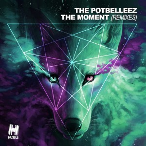 The Potbelleez - The Moment - Artwork