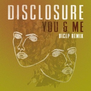 disclosure-bicep-remix